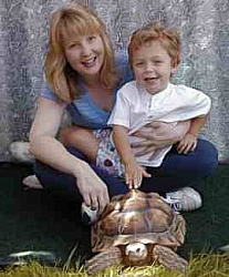 tortoise at kid's party