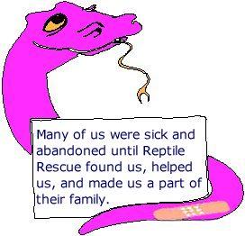 sick snake